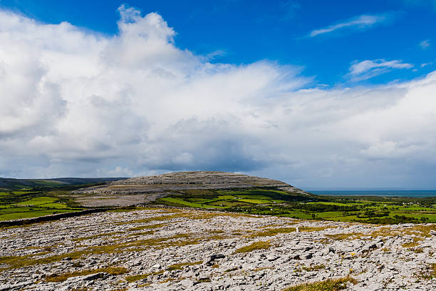 burren landscape, county clare, ireland - the burren stock pictures, royalty-free photos & images
