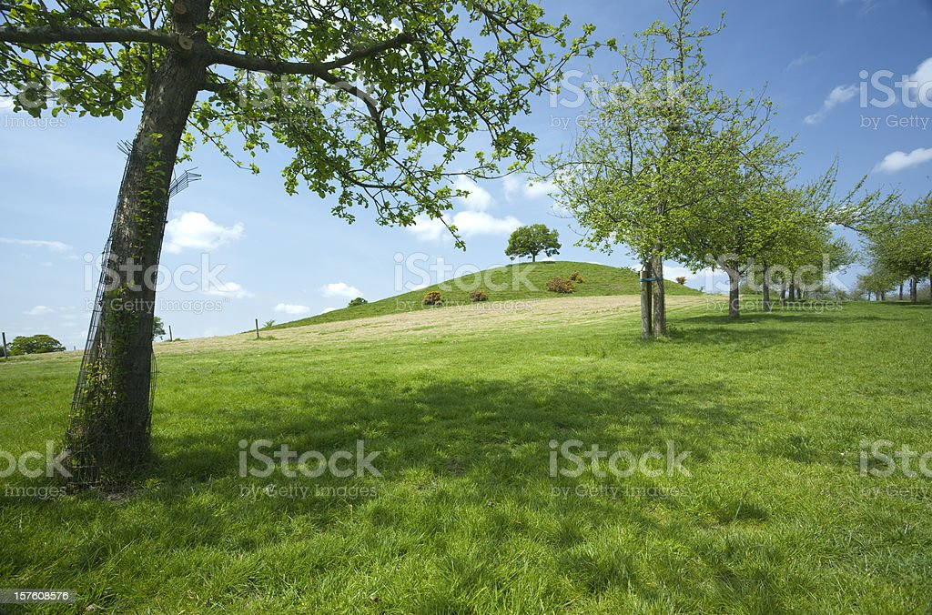 Burrow Hill, Somerset stock photo
