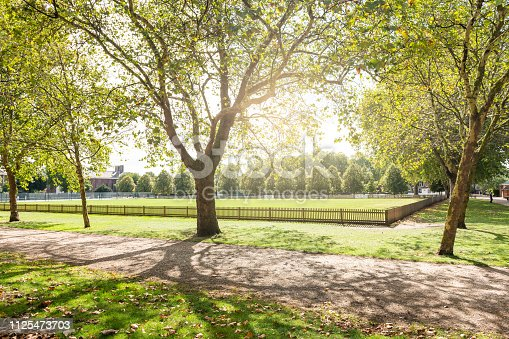Burton Court green lawn park with sunlight and nobody on path in London, UK by Royal Hospital in Chelsea