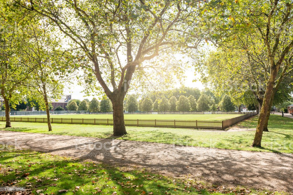 Burton Court green lawn park with sunlight and nobody on path in London, UK by Royal Hospital in Chelsea stock photo