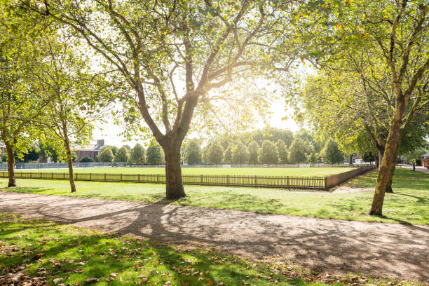 Burton Court green lawn park with sunlight and nobody on path in London, UK by Royal Hospital in Chelsea Burton Court green lawn park with sunlight and nobody on path in London, UK by Royal Hospital in Chelsea courtyard stock pictures, royalty-free photos & images