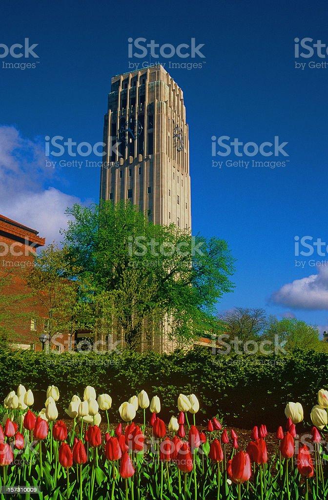 Burton Tower, University of Michigan, Ann Arbor royalty-free stock photo