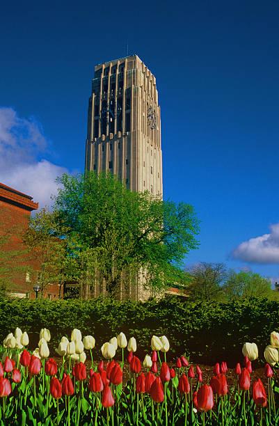 Burton Tower, University of Michigan, Ann Arbor  ann arbor stock pictures, royalty-free photos & images
