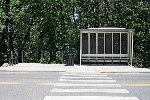Bus shelter with crosswalk and forest stock photo