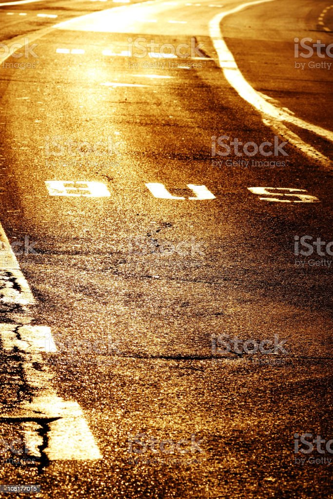 Bus Stop Sign Painted on Road royalty-free stock photo