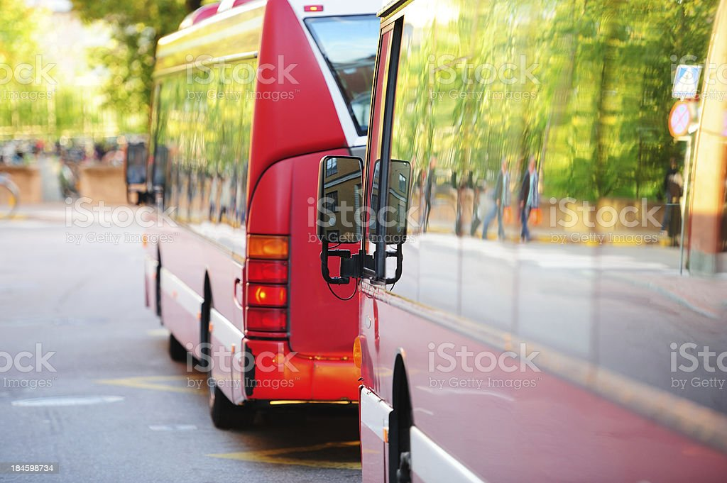 Buses in the city traffic, green trees royalty-free stock photo