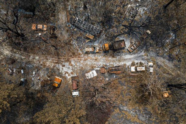 bush brand vernietiging - bosbrand stockfoto's en -beelden