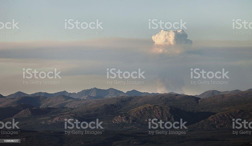 bush fire royalty-free stock photo