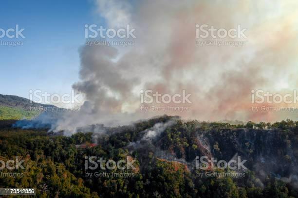 Photo of Bush fire
