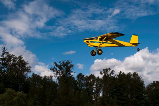 Bush Plane Landing