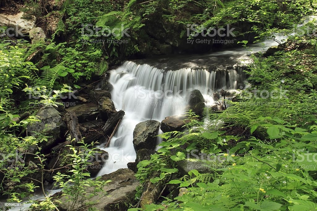 Bush waterfall royalty-free stock photo