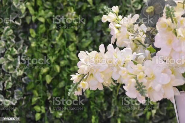 En Buske Med Vita Blommor-foton och fler bilder på Blomkorg - Blomdel
