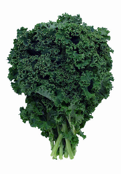 Bushel of green kale on white background Fresh dark green kale. Kale is a kind of cabbage that's often used as a decorative garnish, but if cooked it can also be a very nutritious side dish. Isolated on white. kale stock pictures, royalty-free photos & images