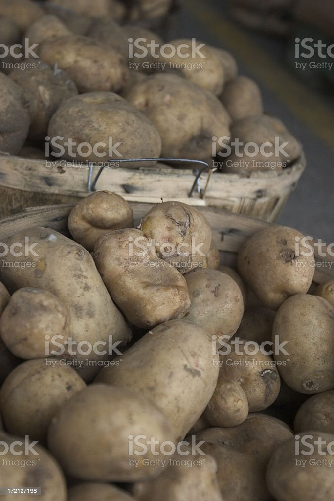 Bushel of Potatoes royalty-free stock photo