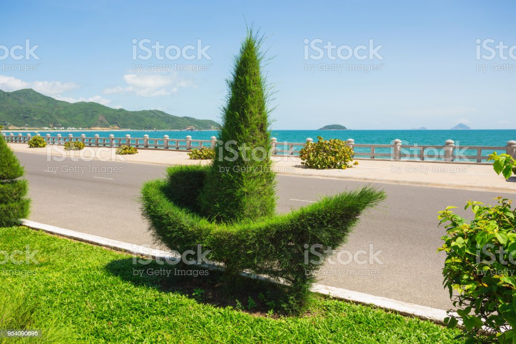 bushes on the embankment of Nha Trang stock photo