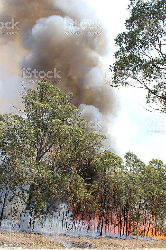 Bushfire Australia stock photo