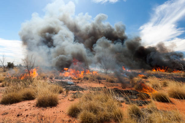 Bushfire in outback Australia stock photo
