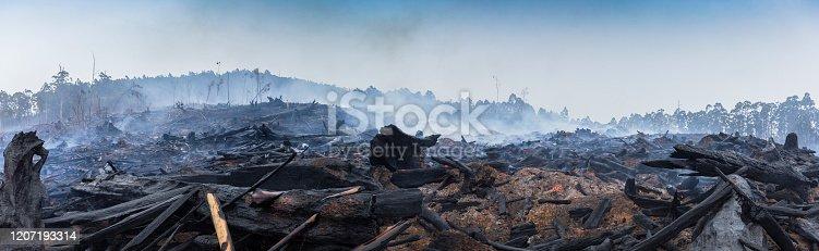 Bushfire smouldering in Australian Outback