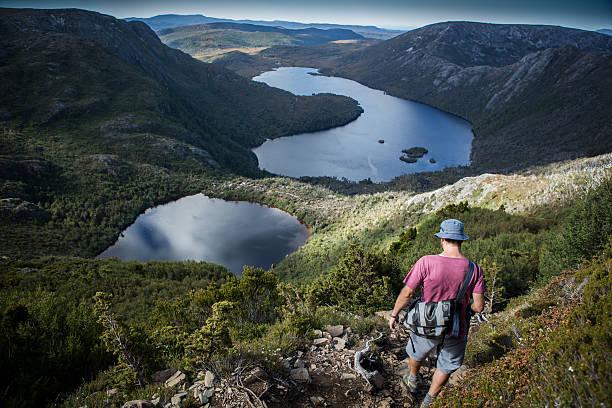 bushwalking in tasmania - cradle mountain stock photos and pictures