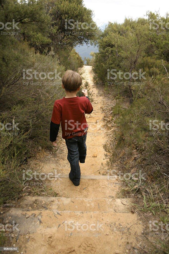 Bushwalking stock photo
