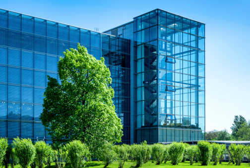 modern offices in a beautiful park