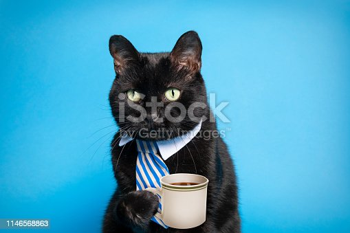 A humorous montage of a black cat in a tie holding a cup of coffee.