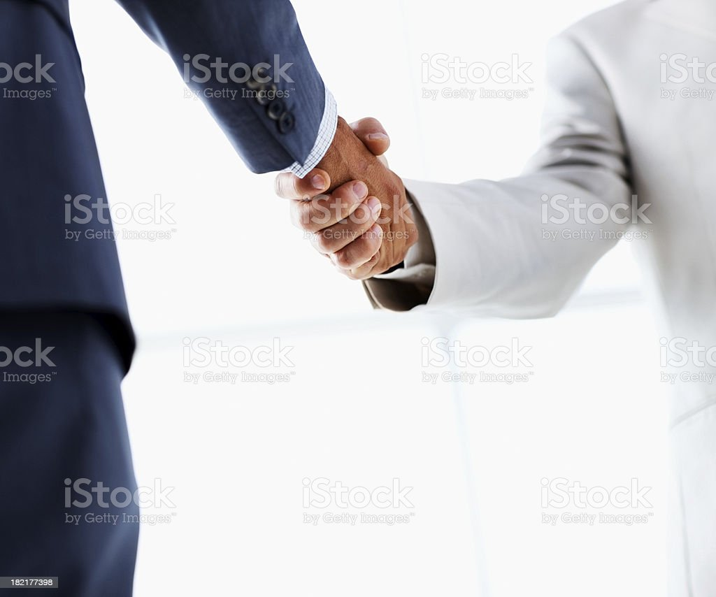Business colleagues shaking hands - Royalty-free Adult Stock Photo