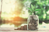 istock business concept money of glass and growht small tree 810721440