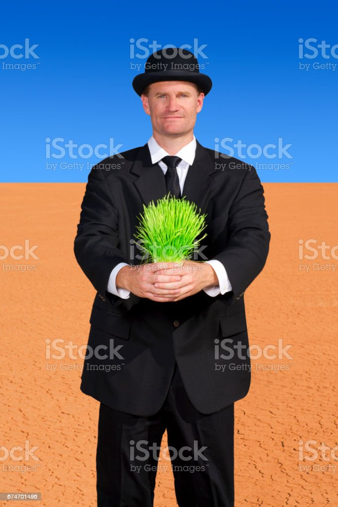 Business concept of growth, finance and investment stock photo