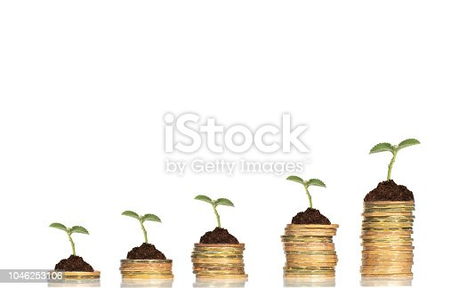 Business concept with stacks of coins with growing plants against white  background