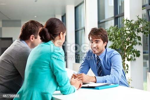 155279487 istock photo Business consulting 482799833