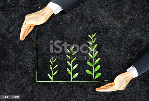 Hands of a businessman holding green plants arranged as a graph / Business ethics / Moral behavior in business / Corporate social responsibility