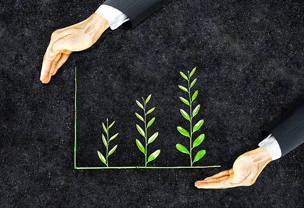 Business ethics Hands of a businessman holding green plants arranged as a graph / Business ethics / Moral behavior in business / Corporate social responsibility environmental consciousness stock pictures, royalty-free photos & images