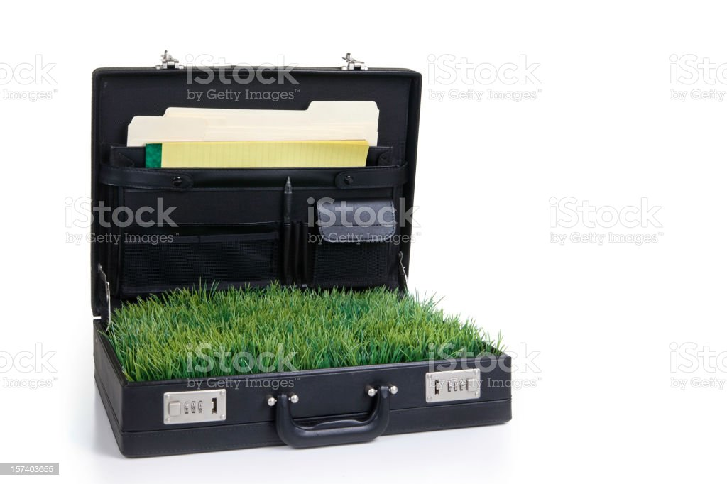 Business Going Green royalty-free stock photo