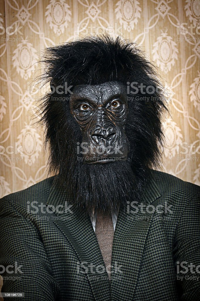 Business Gorilla Portrait stock photo