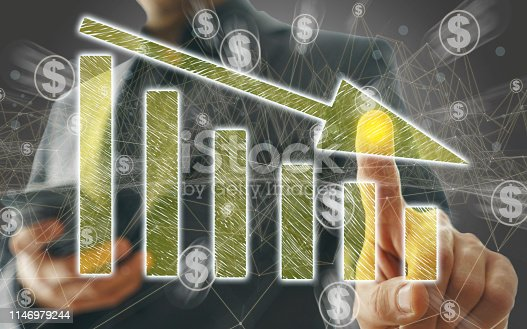 istock Business Graph on Touch Screen 1146979244