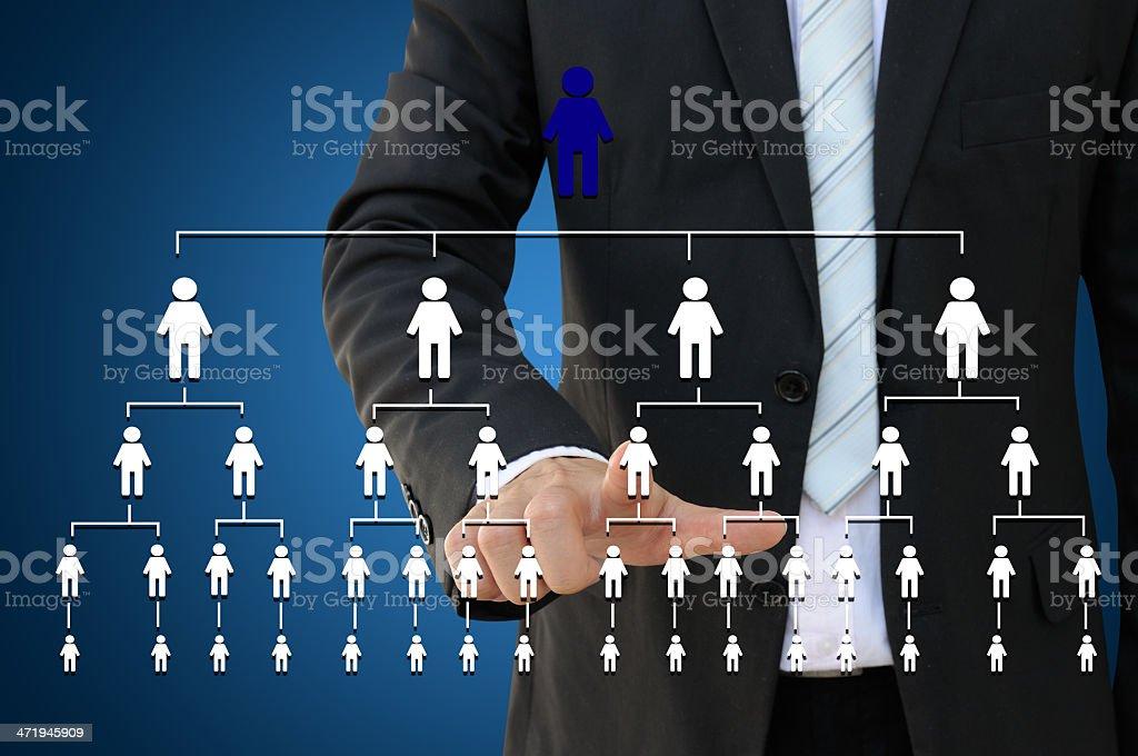 Business hand touching organization chart stock photo