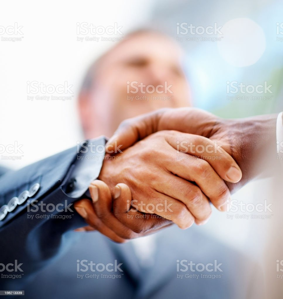 Business hands sealing a deal stock photo