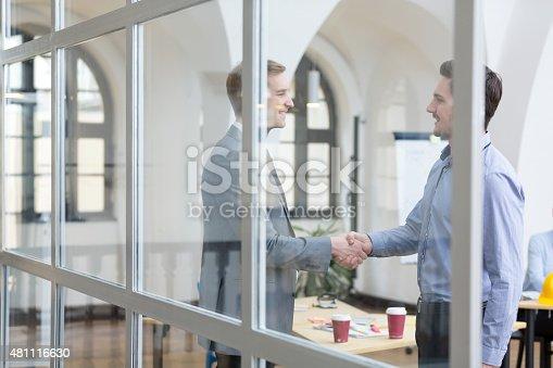 623122018 istock photo Business handshake 481116630