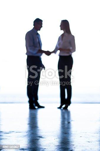 647200468 istock photo Business Handshake 486195962