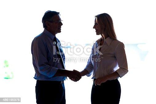 647200468 istock photo Business Handshake 486195976