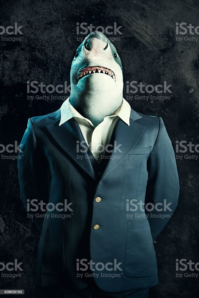 Business Loan Shark royalty-free stock photo