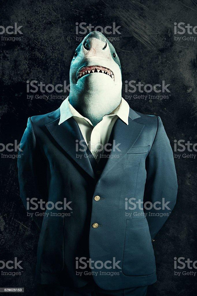 Business Loan Shark stock photo