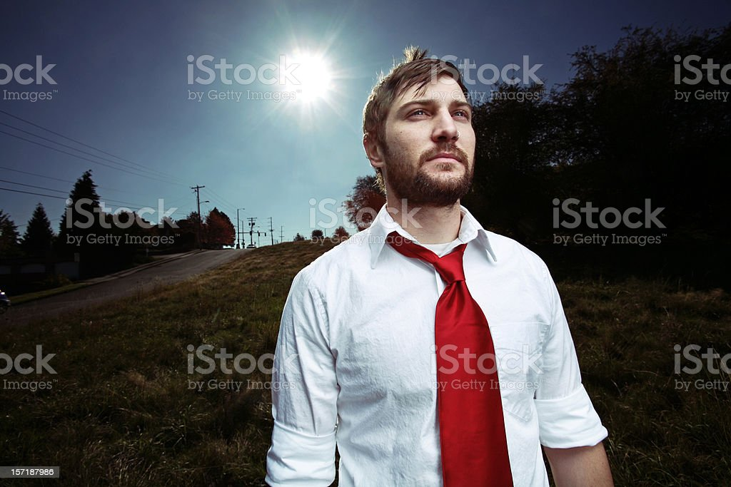 Business Man Field and Sun royalty-free stock photo