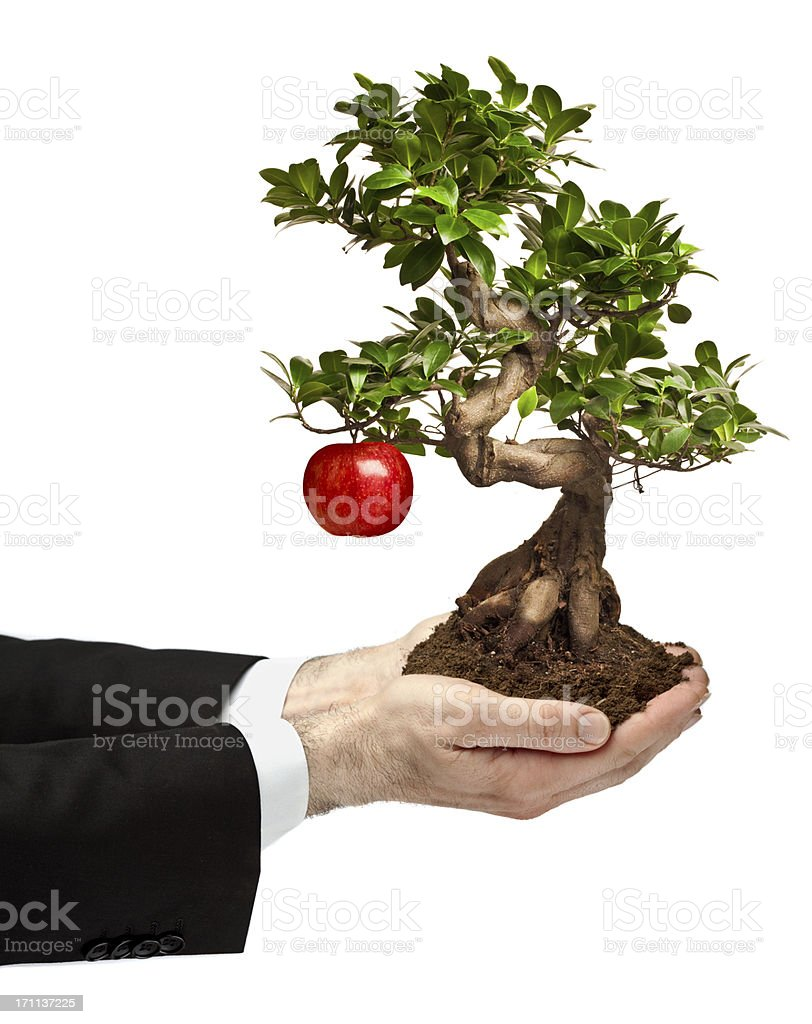business man offer bonsai tree with apple isolated on white royalty-free stock photo