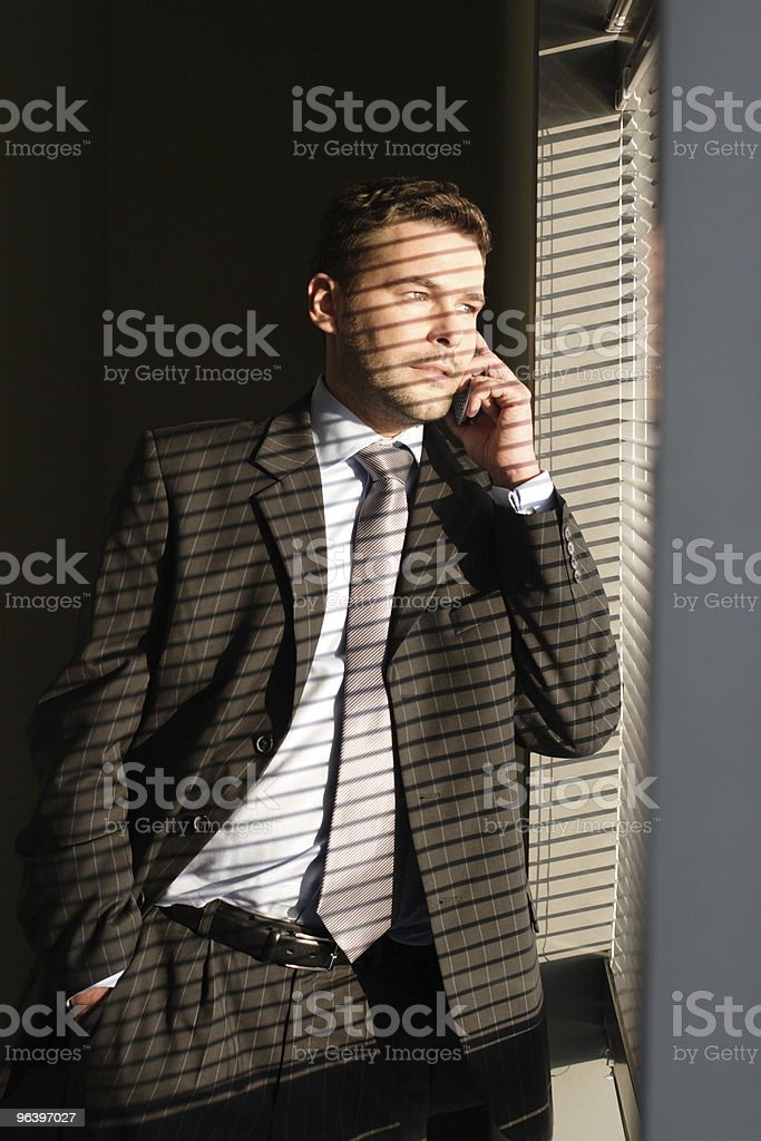 Business man on phon - Royalty-free Adult Stock Photo