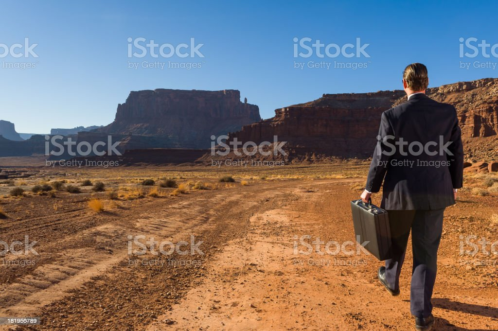 Business Man Walking Away in Desolate Landscape royalty-free stock photo