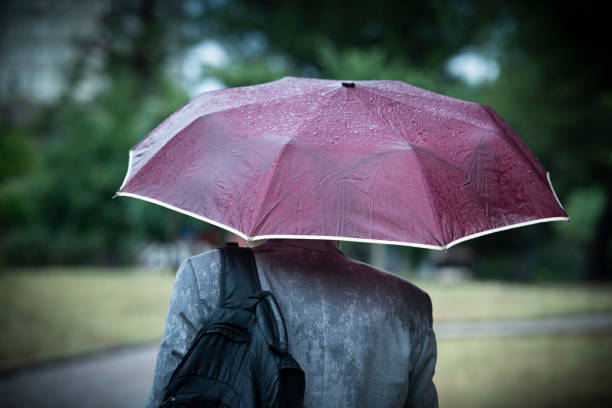 Business Man Walking Under The Rain - foto stock