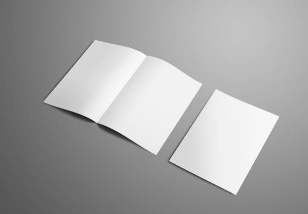 Business mockup with two  A4, (A5) bi-fold brochure with realistic  shadows isolated on gray background. stock photo