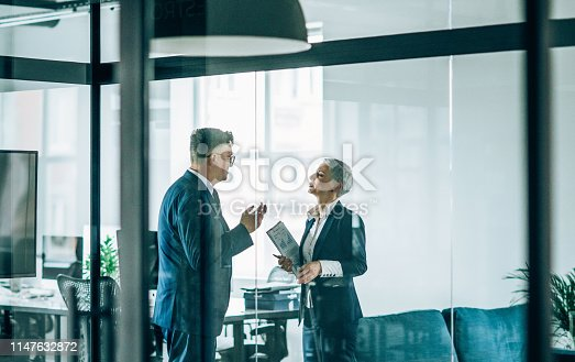 1157633068 istock photo Business partners in discussion 1147632872